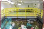 Fiberglass Proves Durable Solution in Shark Tank's Corrosive Saltwater Environment