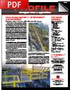 profile-newsletter-Spring2015