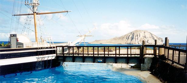 0535-Sea Life Park Main