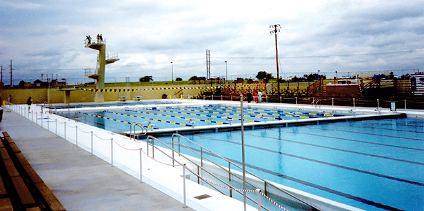 0806-Pool Trough Cover Main2